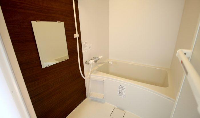 dole tukisamu(ドーレ月寒) 1号室タイプ バスルーム