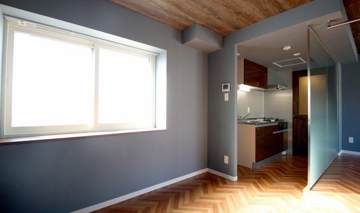 dole tukisamu(ドーレ月寒) 1号室タイプ リビング キッチン
